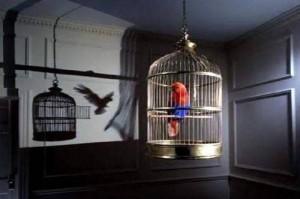 Cuando-un-Pájaro-canta-no-01-300x199
